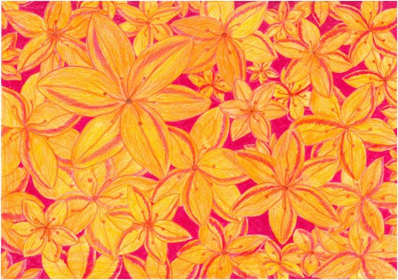 Květy uzdravení